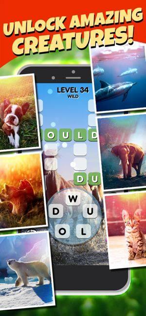 单词搜索宠物游戏图4