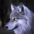 狼模拟器3D安卓版