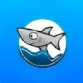 酷鱼生活APP手机端 v1.1.8