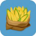 玉米丰收安卓版