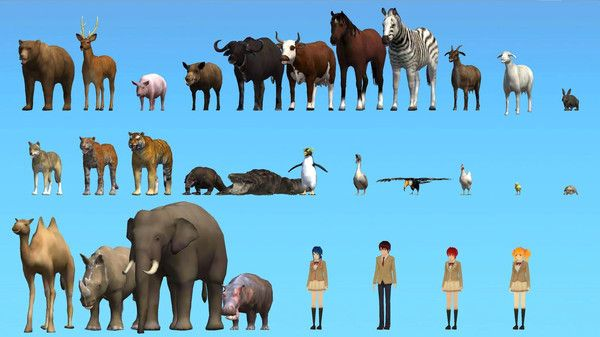 高校模拟器动物世界游戏中文破解版图2: