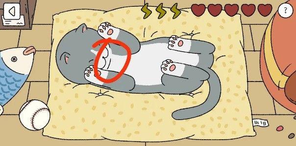 萌宅物語貓咪怎麼摸?摸貓順序攻略[視頻][多圖]圖片4