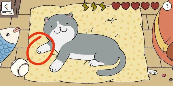 萌宅物語貓咪怎麼摸?摸貓順序攻略[視頻][多圖]圖片1