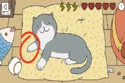 萌宅物语猫咪怎么摸?摸猫顺序攻略[多图]