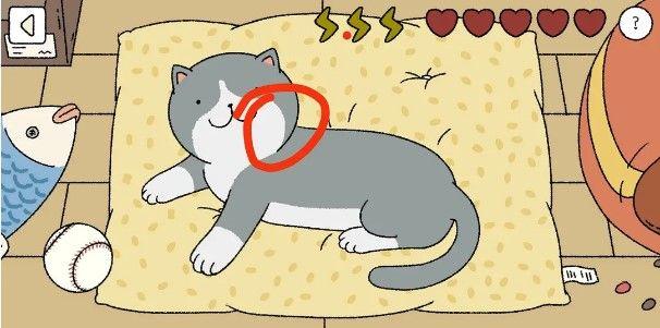 萌宅物語貓咪怎麼摸?摸貓順序攻略[視頻][多圖]圖片3