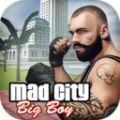 疯狂城市2020游戏