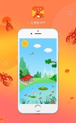 云养虾APP分红虾红包版图片1