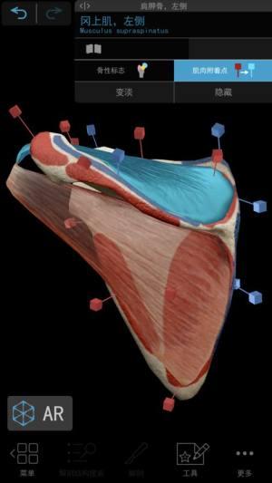 2021人体解剖学图谱破解版图1