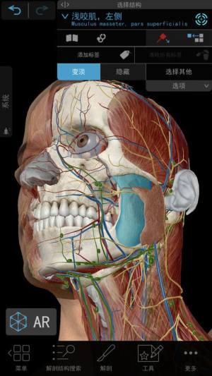2021人体解剖学图谱破解版图3