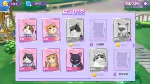 喵与筑攻略大全:猫咪养成攻略图片3