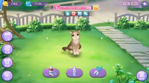 喵与筑攻略大全:猫咪养成攻略图片6