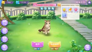 喵与筑攻略大全:猫咪养成攻略图片5