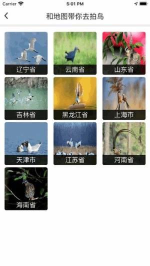 和地图鸟网专用版APP图片1