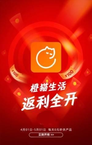 橙猫生活APP图1