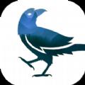 乌鸦之夜手机版