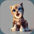 真实小猫3D模拟游戏