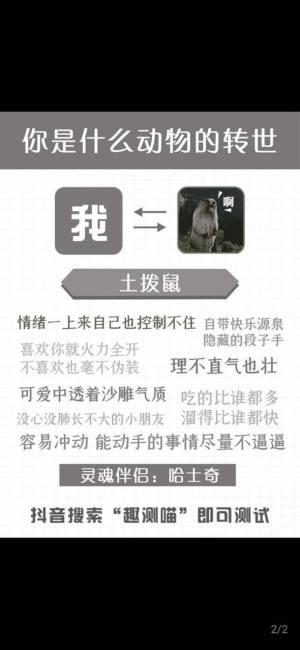 抖音你是什么动物转世测试手机版官方入口图片1