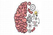 Brain Test谜题急转弯攻略大全:全关卡游戏攻略汇总[多图]