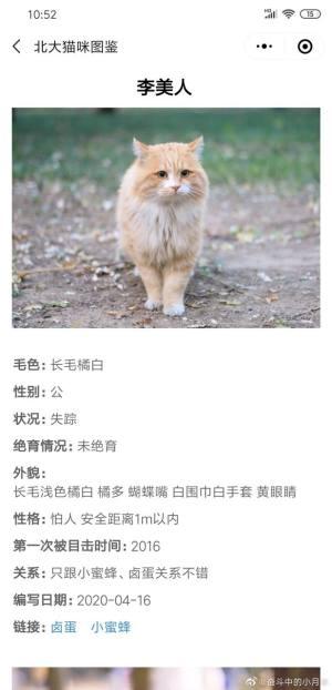 北大猫咪图鉴APP图1