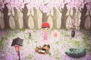 集合啦动物森友会樱花花瓣怎么获得?樱花花瓣获取攻略[多图]