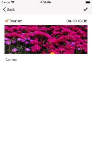 LQ Simple Diary APP手机版图片1