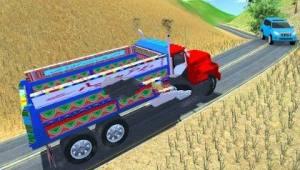 货物印度人卡车3D游戏图4