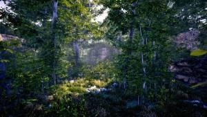 传说中的森林手机版图2