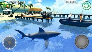 海底猎鲨游戏图2