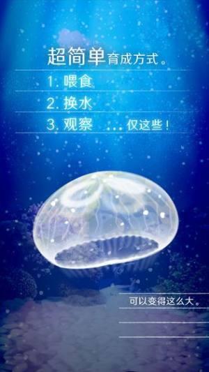 养育水母的治愈游戏图3