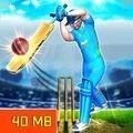 世界板球联赛游戏官方版 v1.5