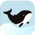 鲸心APP