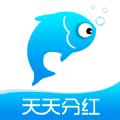 小猫种鱼分红app