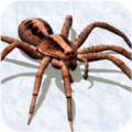 拍蜘蛛模拟器游戏