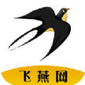 飞燕网APP