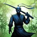 忍者战士暗战游戏