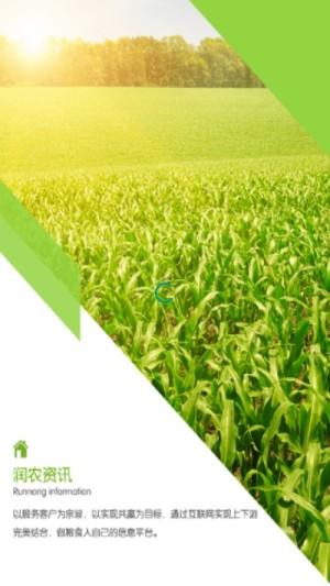 润农资讯APP图1