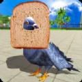 鸽子鸟模拟器中文版苹果版下载 v1.0