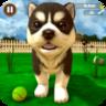 虚拟小狗模拟器游戏
