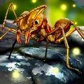 蚂蚁世界大战游戏
