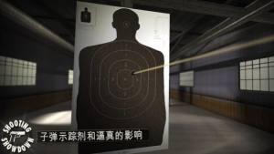 射击表演秀游戏图2