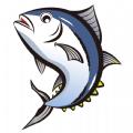金槍魚快訊APP紅包版正版 v1.0