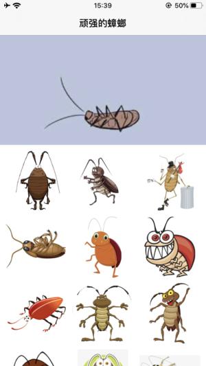 顽强的蟑螂APP图1
