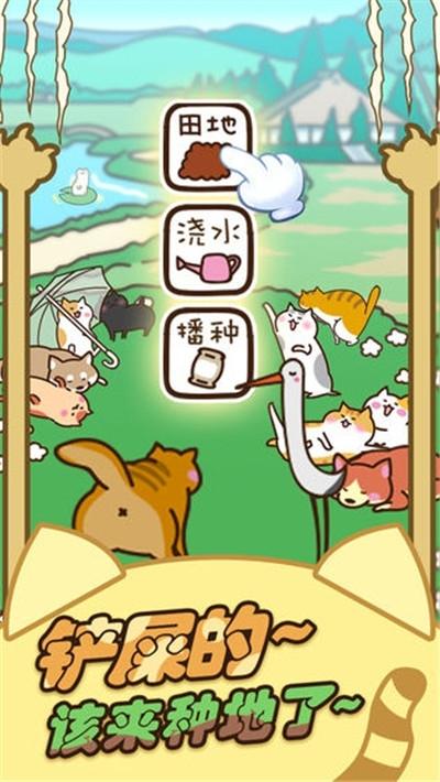 奇妙猫之家福利金v1.0.68红包版福利金图4: