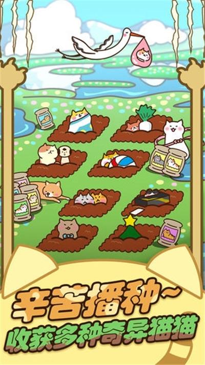 奇妙猫之家福利金v1.0.68红包版福利金图1: