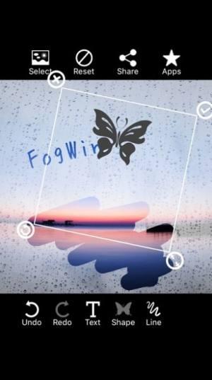 Fogwin APP图2