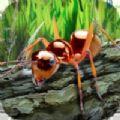 蚂蚁生存模拟器中文版