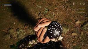 采蘑菇模拟器破解版图3