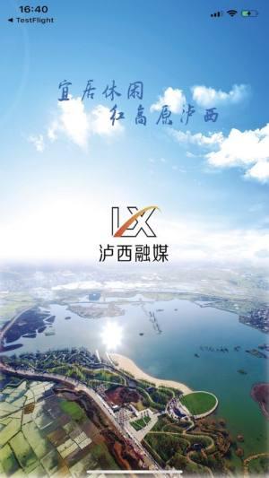 红高原泸西网新闻APP手机客户端图片1