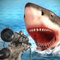 生存鲨鱼游戏