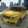 大奔模拟驾驶游戏手机版 v1.0